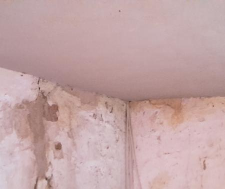 Heritage, Haired lime plaster